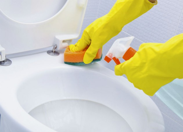 Limpeza da tampa e do vaso sanit rio dicas da lucy for Como limpiar el wc