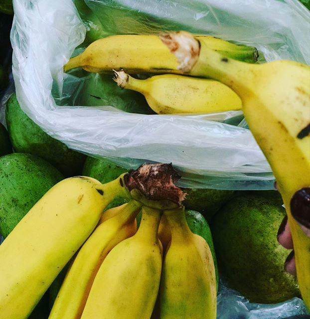 banana_mosquitinho