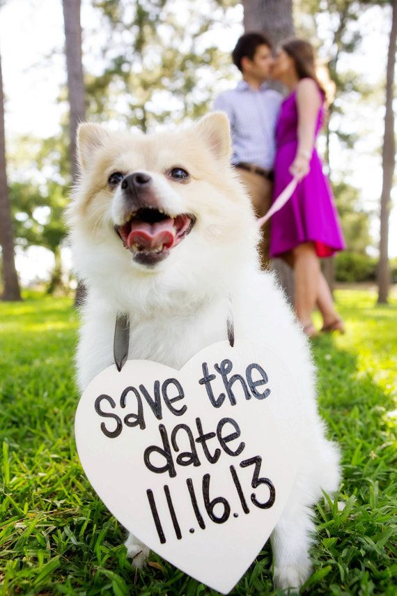 Save-the-date-wedding-ideas-06