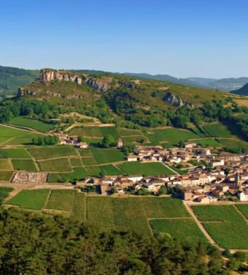 bourgogne-vineyards