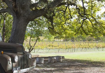 Wine Enthusiast Wine Destinations