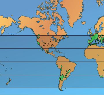Wine World Map