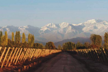 mendoza_valley_vina_cobos